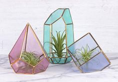 Crystal Terrariums -- Feel inspired by crystals with these geometric terrariums. Faux Crystal Terrariums -- Feel inspired by crystals with these geometric terrariums. Stained Glass Projects, Stained Glass Patterns, Stained Glass Art, Mosaic Glass, Glass Terrarium, Crystal Terrarium Diy, Glass Boxes, Clipart, Decoration