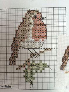 Robin cross stitch