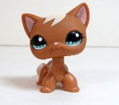 Littlest Pet shop Short Hair Cat kitty Mocha Caramel Brown Swirl European #1170 #Hasbro