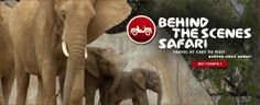 $114 per adult Behind the Scenes Safari (San Diego Zoo) - Travel by cart to visit keeper-only areas! Buy Tickets