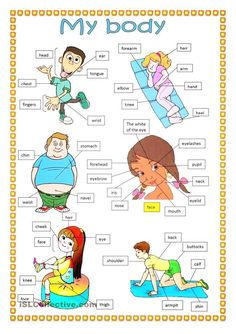Body Vocabularies!  #English http://worldsenglish.net