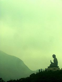 The thought is the thinker; there is no thinker apart from the thought itself.  ( Joseph Goldstein, Insight Meditation)