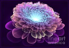 Royal Velvet - A fantasy flower with beautiful decorative effect. Fractal art made in Apophysis.