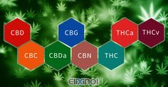 List of Hemp Cannabinoids & Their Origins - https://elixinol.com/blog/list-of-hemp-cannabinoids-their-origins?utm_source=rss&utm_medium=Friendly+Connect&utm_campaign=RSS #cbd #hemp