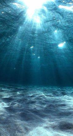 Summer nature photography ocean underwater New ideas Ocean Wallpaper, Nature Wallpaper, Wallpaper Backgrounds, Iphone Wallpapers, Pastel Wallpaper, Underwater Wallpaper, Ocean Underwater, Landscape Wallpaper, Animal Wallpaper