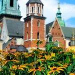 Vem ver aqui quais são as alternativas e nossas experiências para ir de Berlim a Cracóvia e Auschwitz.