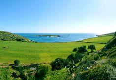 Cose da fare a Favignana in primavera: l'isola preferita dagli utenti TripAdvisor