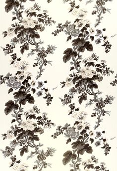 Pyne Hollyhock in Color Charcoal