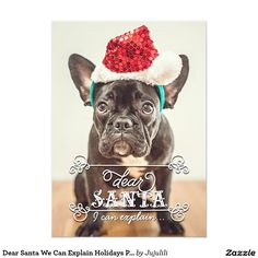 Fun Lettering Typography Dear Santa We Can Explain Holidays Photo Cards