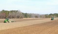 Getting tobacco land ready for 2014