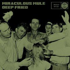 Miraculous Mule release debut album, Deep Fried - #AltSounds