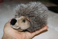 Vintage Steiff Hedgehog number 1675/13 by TheFauxChateau on Etsy
