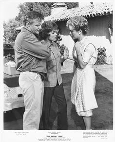 Brian Keith and Maureen O'Hara and Joanna Barnes in Disney's The Parent Trap 1961 Movie Photo, I Movie, Movie Stars, Original Parent Trap, Joanna Barnes, Parent Trap Movie, Disney Live Action Films, Brian Keith, Maureen O'hara