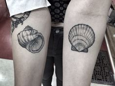 Seashell tattoos. Dotwork. By Jennifer lawes.