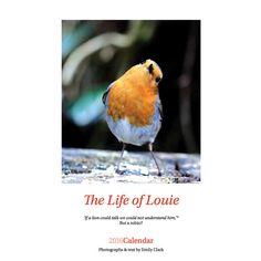2016 Calendar Robin Calendar Bird Calendar by Larryware on Etsy
