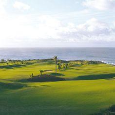 Campo de golf en #Tenerife