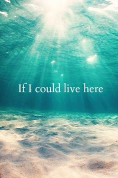If I could be a mermaid. If I could live here...
