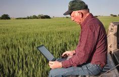 Agricoltura moderna, la tecnologia in aiuto di raccolti più sicuri
