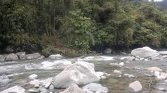 Reserva Tapantí
