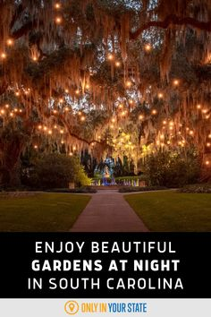 These beautiful gardens light up with color and art at night. Don't miss this summer exhibit in South Carolina. Murrells Inlet Sc, Best Bucket List, Hidden Beach, Swimming Holes, United States Travel, Natural Wonders, Vacation Spots, Exhibit, Night Time
