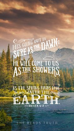"""""""Let us know; let us press on to know the Lord; His going out is sure as the dawn; He will come to us as the showers, as the spring rains that water the earth.""""  ~ Hosea 6:3 #SheReadsTruth #Hosea Day 6"""