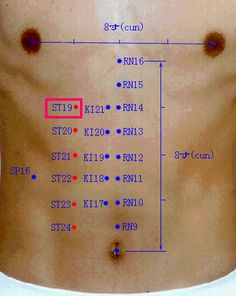 Acupuncture Points on the Stomach.