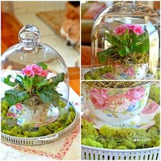 Tischdeko mit blumen green flowers pinterest - Glasglocke dekorieren ...