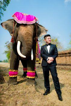 Pre-Wedding at Ayothaya Floating Market and Ayutthaya Elephant Village