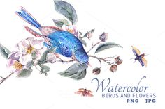 Watercolor blooming apple and birds by Depiano on @creativemarket