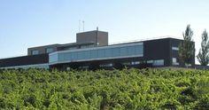 Catamos los vinos de Bodegas y Viñedos de Trujillo