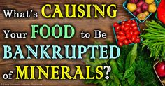 How to Bring Minerals Back Into the Soil and Food Supply - The continuous depletion of minerals in food matches the progressive implementation of agricultural practices, which deteriorate soil mineralization. http://articles.mercola.com/sites/articles/archive/2014/05/25/food-minerals-soil-health.aspx