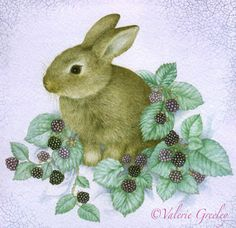 """Bunny and Blackberries"" by Valerie Greeley"