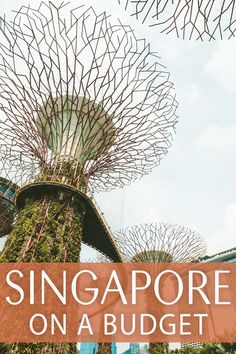 As a travel destination, Singapore definitely isn't the easiest on the pockets. Though, you shouldn't let that keep you from visiting the gorgeous country! Here's how to travel Singapore on a budget. Singapore Travel Tips, Japan Travel Tips, Asia Travel, Travel Guide, Singapore Guide, Visit Singapore, Work Travel, Honeymoon On A Budget, Honeymoon Destinations