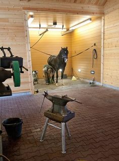 Lighting in Farrier Bay  The up-lighting in this dedicated farrier bay helps the shoer better see his or her work