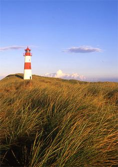 Sylt, North Frisian Islands (off Danish Coast). A friend of mine came from here and told me how beautiful it was before she died and I would love to go