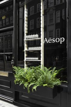 Aesop Marylebone shop interior by Studio KO note: beautiful Aesop shop in London Interior Windows, Retail Interior, Interior And Exterior, Exterior Design, Interior Office, Boutique Store Front, Boutique Stores, Design Café, Store Design