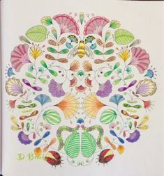 From Animal Kingdom By Millie Marotta ColouringColoring Book