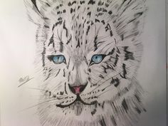Awesome drawing of a Snow Leopard Hi everyone, this is is a time lapse showing you how I drew this wonderful snow leopard. Cool Pencil Drawings, Snow Leopard, Cool Stuff, Watch, Link, Awesome, Easy, Clock, Bracelet Watch