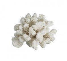 Resin Coral