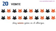 Spanish numbers VEINTE (twenty) -> There are twenty cats in the shelter