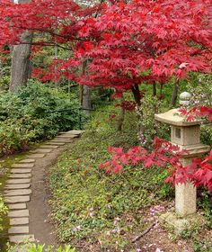 Beautiful Japanese Garden at Stan Hywet Gardens in Akron, OH