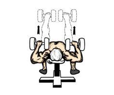 Flat dumbbell bench press | http://mygymlife.com/how-to-perform/dumbbell-bench-press