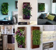 Otthon és dekor: Növények rendhagyó elhelyezése a lakásban