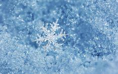 Волшебство снега и льда.