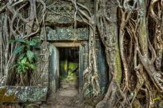 5880-1-750-Ancient-stone-door-and-tree-roots-Ta-Prohm-temple-Angkor-Camb.jpg (750×499)