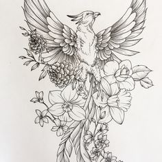 Sketch Pheonix Drawing - Phoenix Sketch Sleeve Tattoos Feather Tattoos Phoenix Tattoo Phoenix Bird Sketch At Paintingvalley Com Explore Collection Of Tattoo Sketch Phoenix Pho. Tattoos, Sleeve Tattoos, New Tattoos, Feather Tattoos, Hip Tattoo, Beautiful Tattoos, Pheonix Tattoo, Phoenix Tattoo, Flower Tattoos
