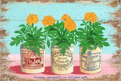 vintage marmalade crocks jars