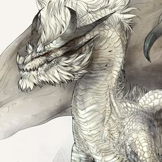 Monster Hunters United!, kiguri: White Fatalis + how I drew him