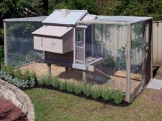chicken coop cubby house