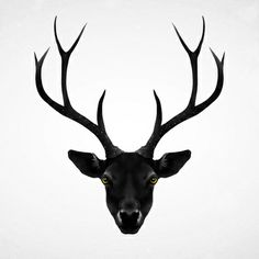 The Black Deer Art Print . Stag . Photography . Black .